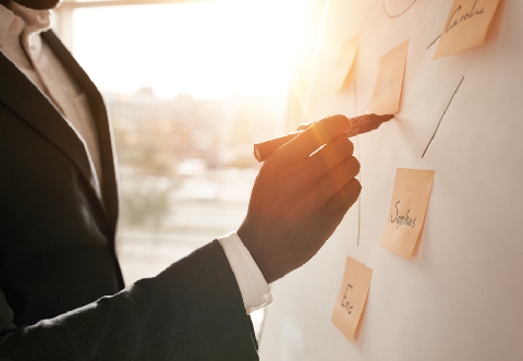 Services Alternative Strategies
